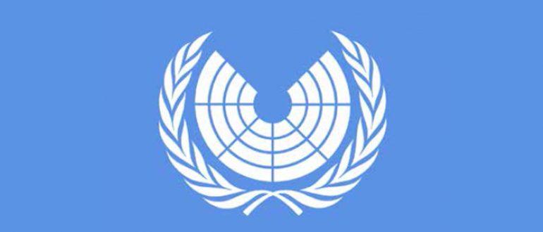 Der Vorschlag eines UN-Parlaments – Die Idee, ihre Unterstützer und mögliche Umsetzungswege